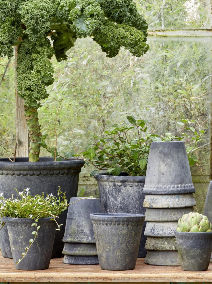 10139909-19 B.Green lacepot Choko Patina Clay Pot