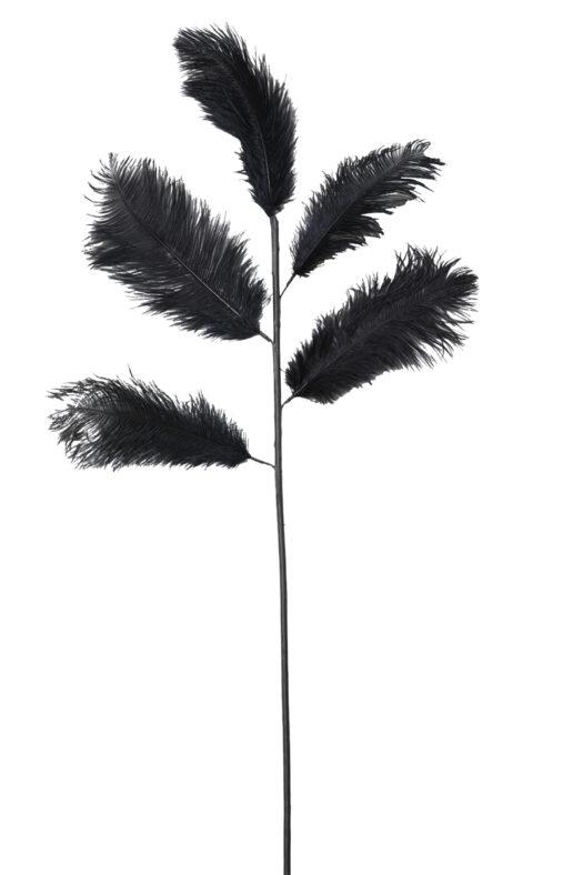 7422512 Ostrich Feather Black 129cm 5 Branch