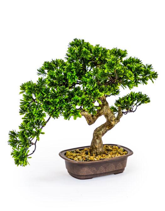 AF56 Ornamental Medium Bonsai Tree in Iron Pot