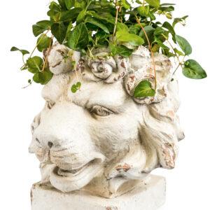 Rustic Stone Effect Lion Head Planter