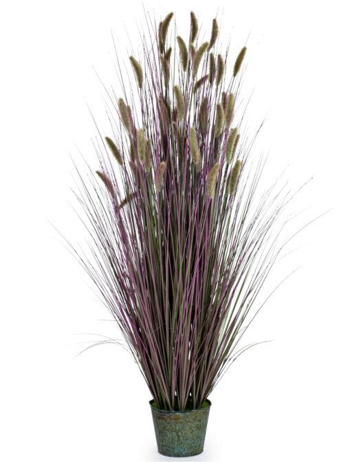 ORNAMENTAL GRASSES IN GALVANISED POT - STYLE 6 ITEM CODE- AF37