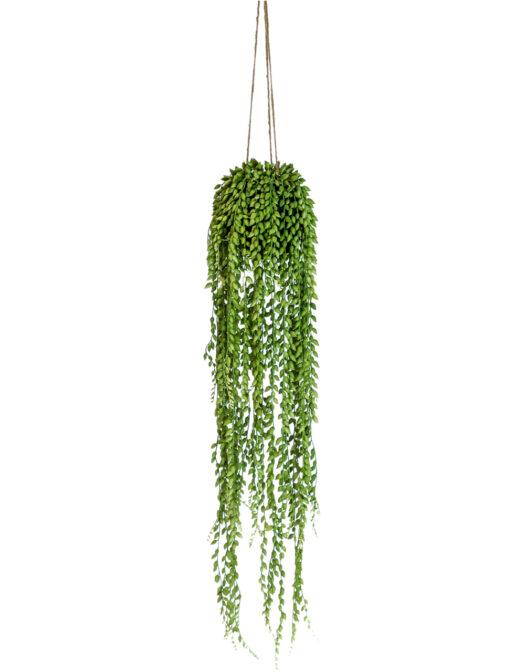 AF77 Ornamental Hanging String of Pearls Vine Arrangement