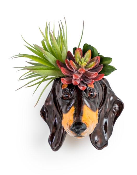 Dachshund Head Vase SD12_A Copy_Web