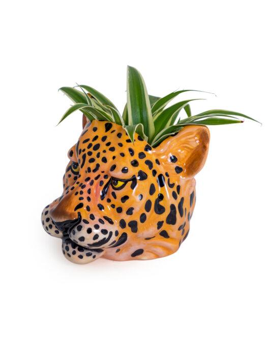 Ceramic Leopard Head Storage Jar/Vase