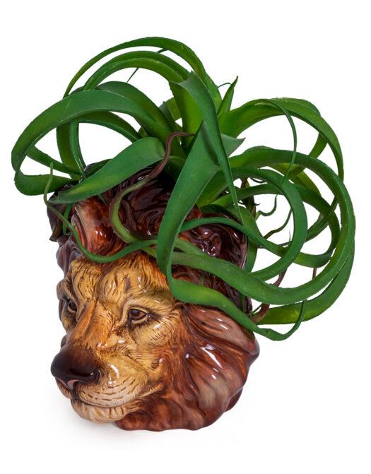 Ceramic Lion Head Storage Jar/Vase