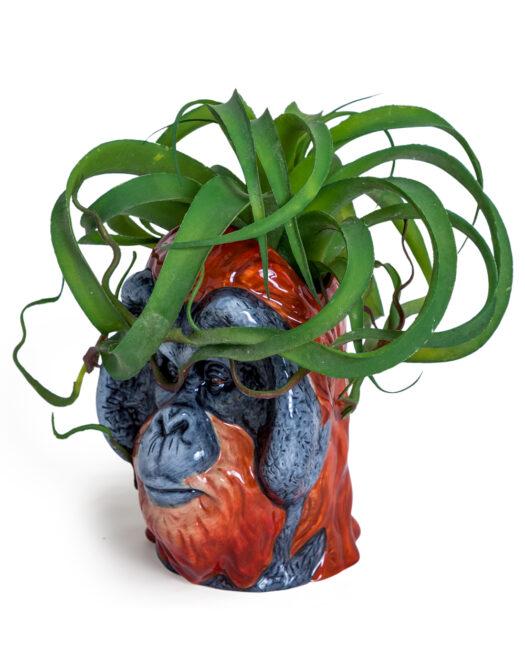 Ceramic Orangutan Head Storage Jar/Vase