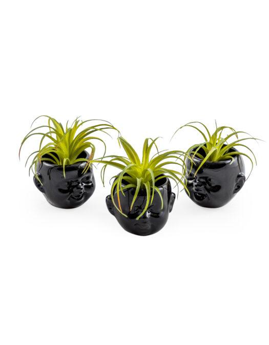 Set of 3 Black Ceramic Mini Baby Face PotsSet of 3 Black Ceramic Mini Baby Face Pots SET OF 3 BLACK CERAMIC MINI BABY FACE POTS ITEM CODE- MCP16