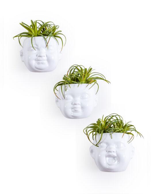 Set of 3 White Ceramic Baby Face Wall PotsSet of 3 White Ceramic Baby Face Wall Pots SET OF 3 WHITE CERAMIC BABY FACE WALL POTS ITEM CODE- MCP18