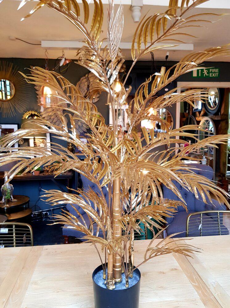 Small Palm Tree