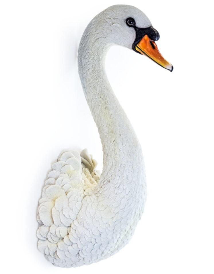 Large White Swan Wall Head