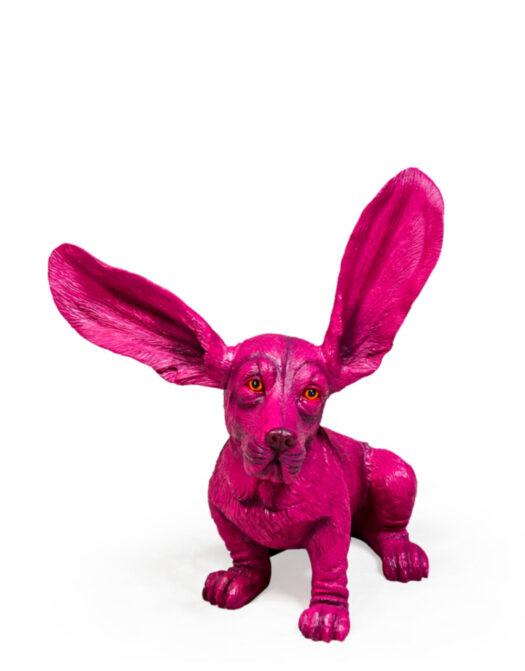 Purple Surprised Basset