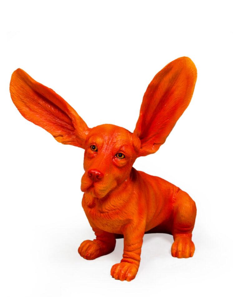 Atomic Orange Surprised Basset